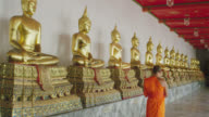 WS DS buddhist monk walking along row of Buddha statues in Wat Pho, rear view, RED R3D 4K