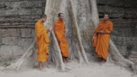 MS Buddhist monks stand next to a large, old tree talking and laughing together while one monk gets a call on a mobile phone, at an ancient temple in Angkor Wat / Siem Reap, Cambodia