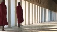 buddhist novices walking
