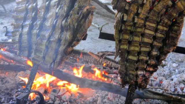 Buenos Aires Argentina cooking food beef ribs on fire Gaucho cowboy ranch for tourists outside city called Don Silvano Ranch