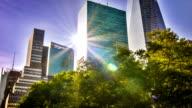 Edificio, albero e sole