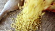 Bulgur Wheat Falling
