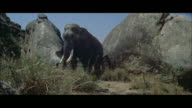 MS Bull elephant standing by large boulders