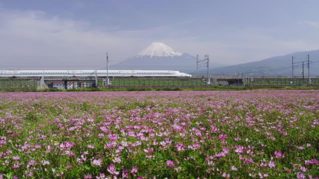 Bullet train travelling in front of Mt. Fuji in Japan