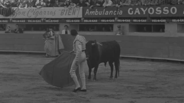 WS TS Bullfighter twirling to bull in bullring