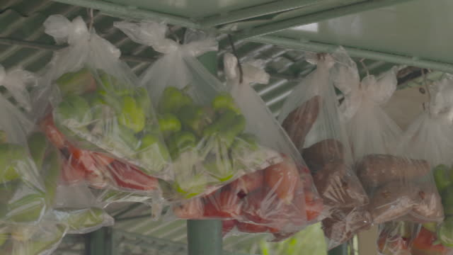 Bundles of fruit and vegetables hanging in plastic bags