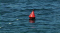 Buoy swimming on sea