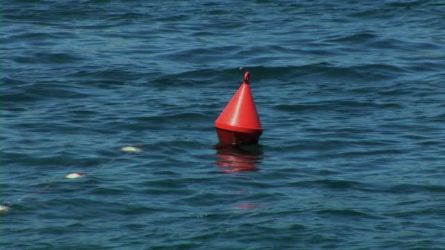 Buoy swimming on sea