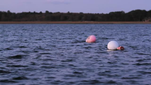2 buoys float in blue water