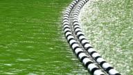 Buoys row floating.