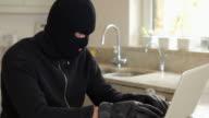 Burglar hacking laptop