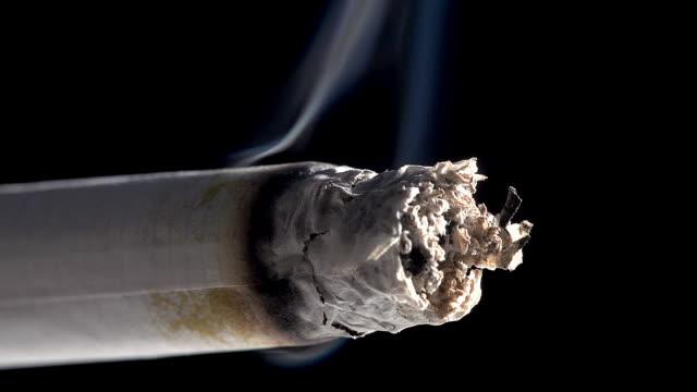 Burning Cigarette against Black Background, Real Time