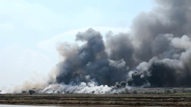 Burning garbage heap of smoke