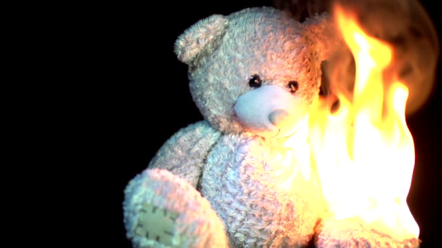 burning teddy in slow motion