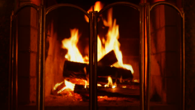 Burning Wood In The Fireplace. Shield for fireplaces.