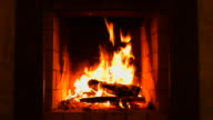Burning Wood In The Fireplace. Volumetric fireplace.