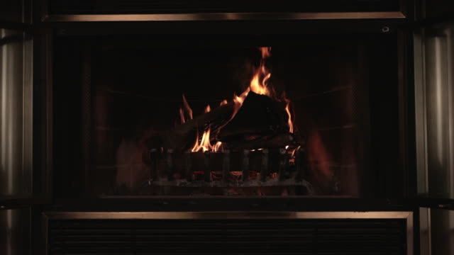 Burning Wood Inside Fireplace