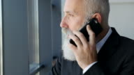 Business. Bearded businessman talking on the phone in an office building