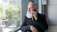 Business. Bearded businessman talking on the phone