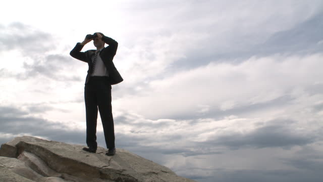 Business man looks to the future atop a mountain