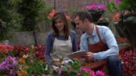 Business owner and employee doing inventory of the flower plants