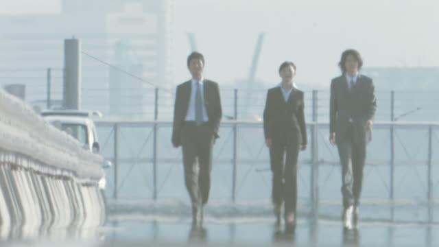 Business people walking side by side