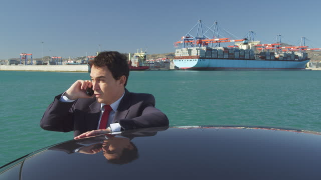 WS Businessman talking on mobile phone in port and container terminal / Malaga, Malaga, Spain