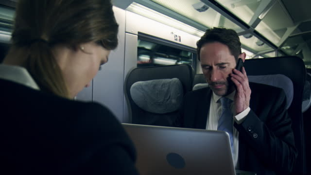 Businesspeople working in train
