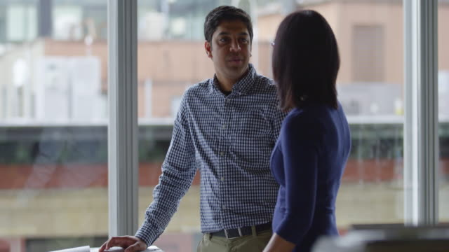 MS Businesswoman and businessman in discussion near windows in office