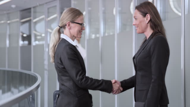 DS Businesswoman meeting her female colleague in the corporate hallway