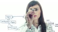 businesswoman showing xml structure