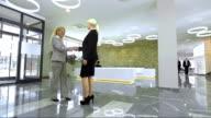 DS LS Businesswomen Greet In The Lobby
