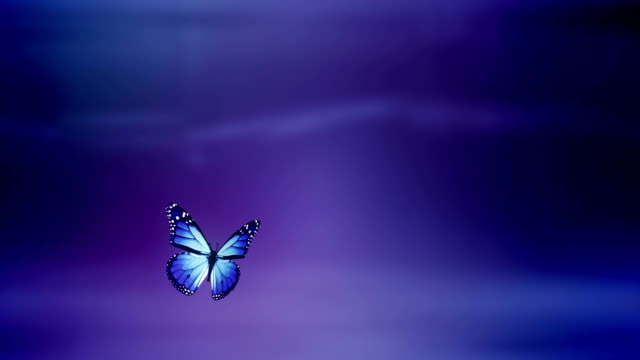 Atterra con farfalla Luma Matte/Alfa-ciclo (viola)