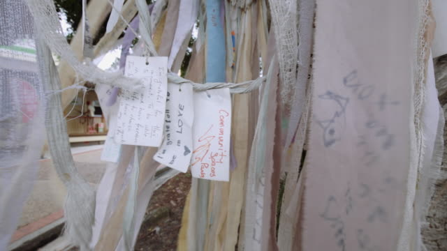 Byron Bay love and hope messages hanging from a tree