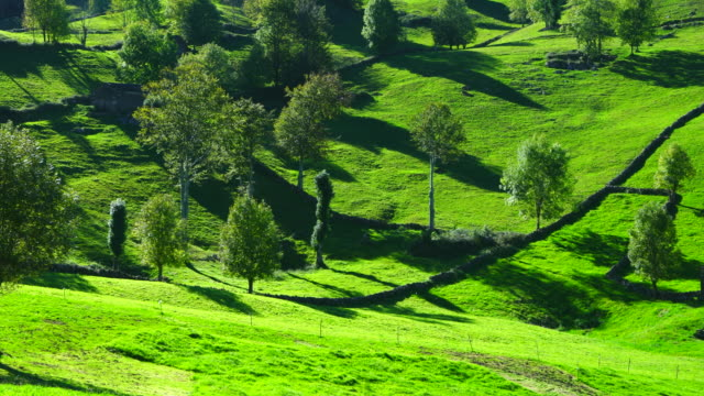 Cabañas Pasiegas, Alto Miera, Miera Valley, Valles Pasiegos, Cantabria, Spain, Europe