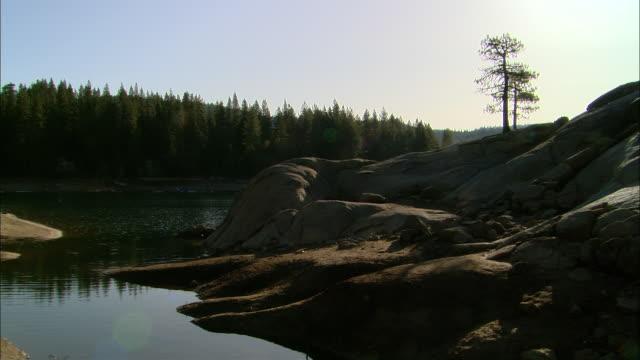 MS, USA, California, Shaver Lake