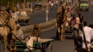 Camels trucks motor cycles and cars pass along busy road Jaipur Rajasthan Available in HD.