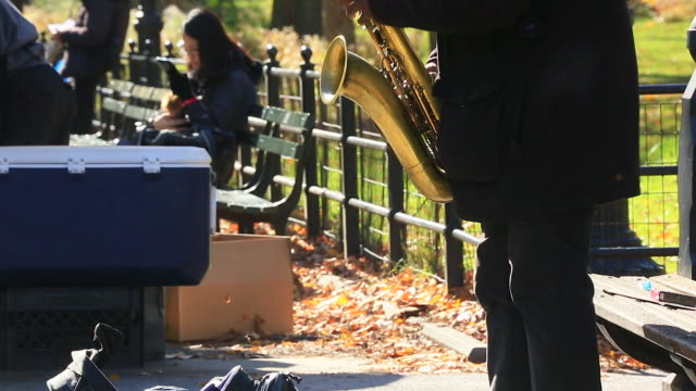 TU Camera captures a musician at The Mall which are surrounded by autumn color trees at Central Park.