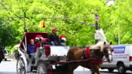 Camera captures the Central Park South traffic, horse carriages and people along rows of fresh green trees at Central Park New York.
