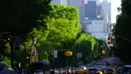 Camera captures the Central Park West traffic and people along rows of fresh green trees an evening at Central Park New York. Midtown skyscrapers can be seen behind.