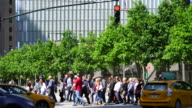 Camera captures the traffic and people along rows of fresh green trees beside the 9/11 Memorial at Lower Manhattan New York.