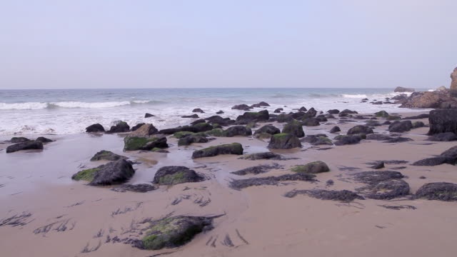 W/S Camera pan of rocks and seaweed on beach.