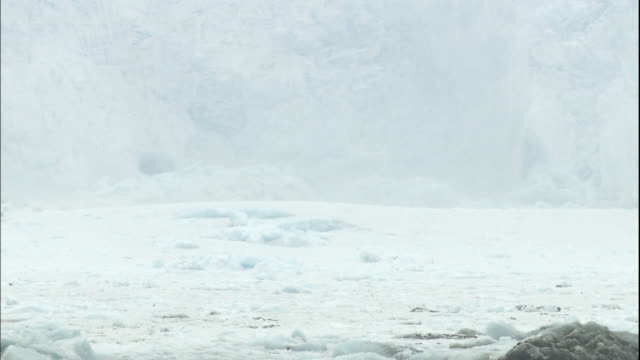 Camera shakes as calving Sermeq Kujalleq glacier makes waves on surface of Ilulissat Icefjord, Greenland