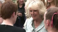 Camilla the Duchess of Cornwall attended a reception in her honour at the British embassy on Monday evening in the presence of British writers actors...