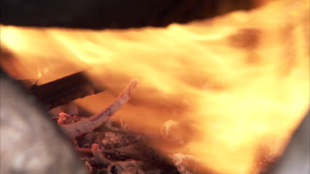 A campfire blazes under a pot. Available in HD
