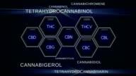 Cannabinoid-Wissenschaft. Verschiedene Verbindungen von Marihuana