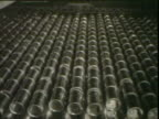 Cans rolling on conveyor belt and into water