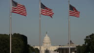 US Capitol and flags