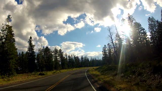 Car driving through national park road