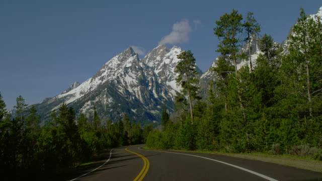 WIDE car POV on curvy tree-lined road toward snowy Rocky Mountains, Yellowstone National Park, Wyoming